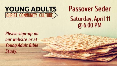 Young Adult Passover Seder